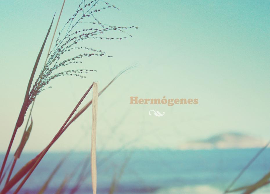 4 - hermógees_destaque