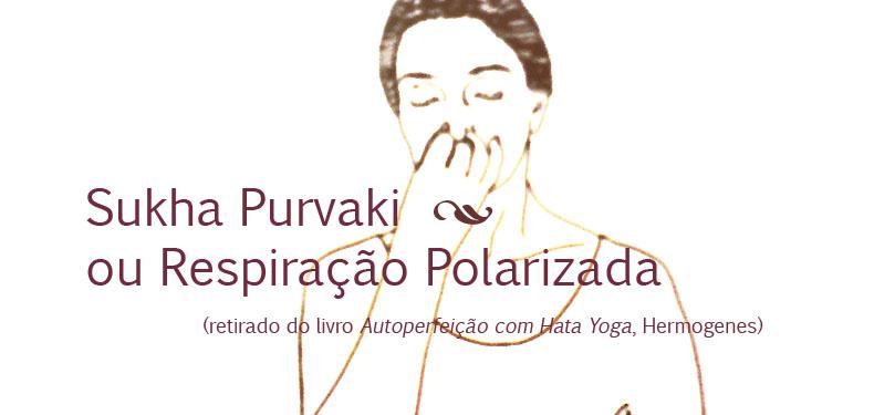 destaque_polarizada copy