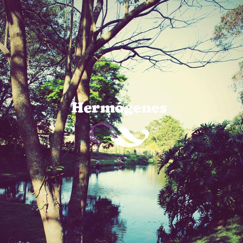 hermógenes_desilusao destaque